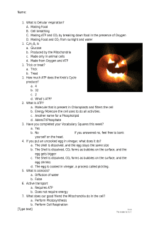 Cellular Respiration Halloween Quiz