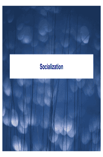 Society and Socialization
