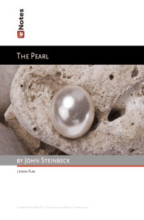 The Pearl eNotes Lesson Plan
