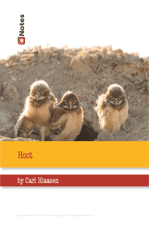 Hoot eNotes Lesson Plan